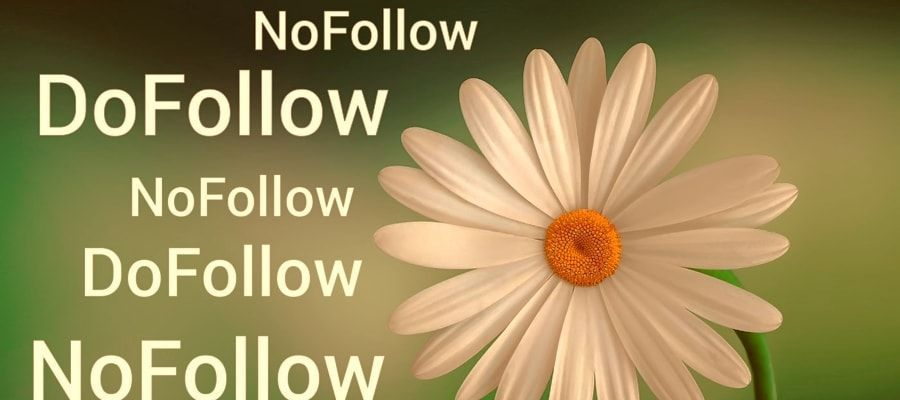 Menú Wordpress y enlaces nofollow